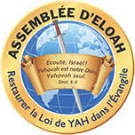 The Assembly of Eloah